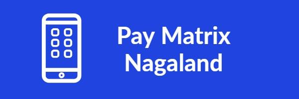 Pay Matrix Nagaland