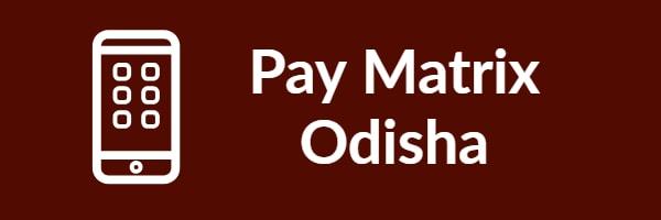 Pay Matrix Odisha